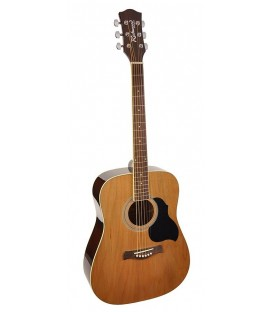 RICHWOOD RD-12-SB / DREADNOUGHT / CLAVIJERO DIE CAST / SUNBURST